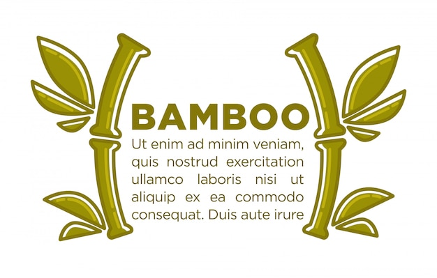 Bambusvektorplakat-designschablone des tropischen palmblattes für badekurort-mitte
