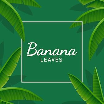 Bananenblätter hintergrundillustration