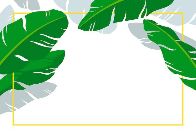 Bananenblätter mit linie rahmen auf weißem hintergrund