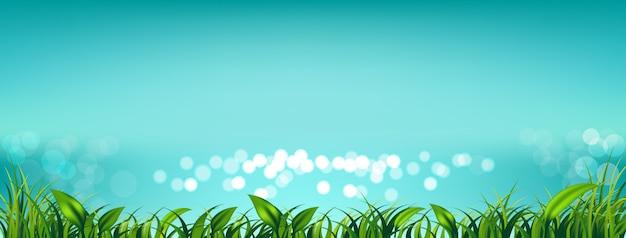 Banner des himmels mit frischem grünem gras und verschwommenem meer