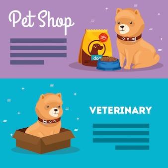 Banner-set von tierhandlung veterinär