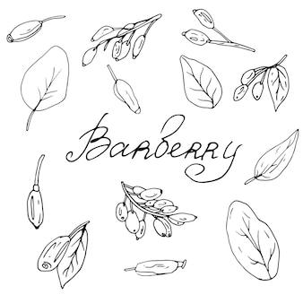 Barbery-set eine sammlung von malbüchern für kinder und erwachsene set mit dekorativen elementen