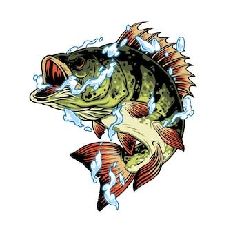 Barschfisch im wasser spritzt konzept im vintage-stil isolierte illustration