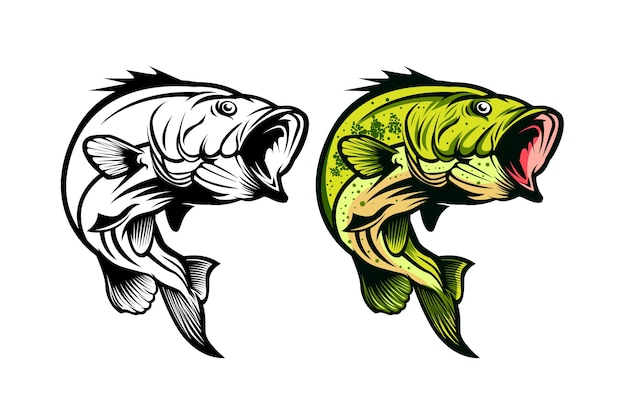 Bass fisch-angeln vektor-illustration