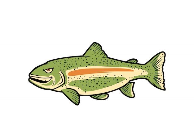 Bass fisch