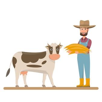Bauer gibt stroh für milchkuh