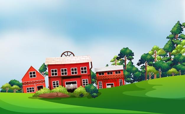 Bauernhof in der naturszene mit scheune und bauernhaus