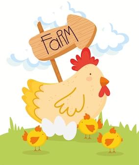 Bauernhof süße henne und hühner