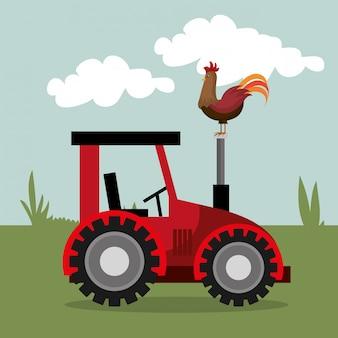 Bauernhofnatur und lebensstil