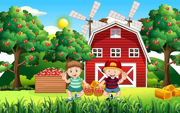 Bauernhofszene mit bauernjunge erntet äpfel