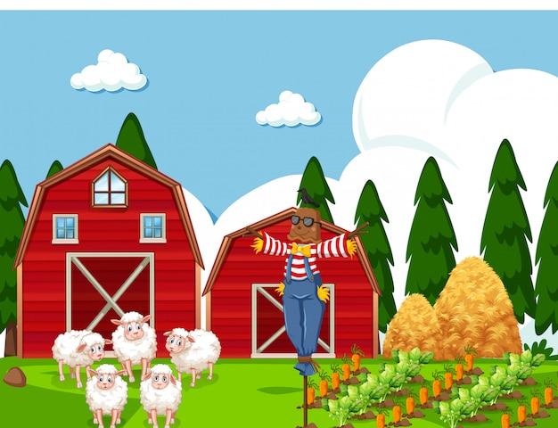 Bauernhofszene mit schafen