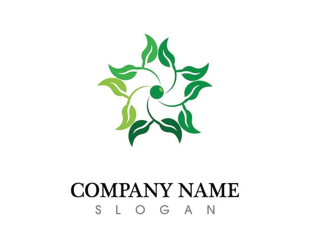 Baum blatt vektor-logo-design