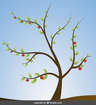 Baum-darstellung