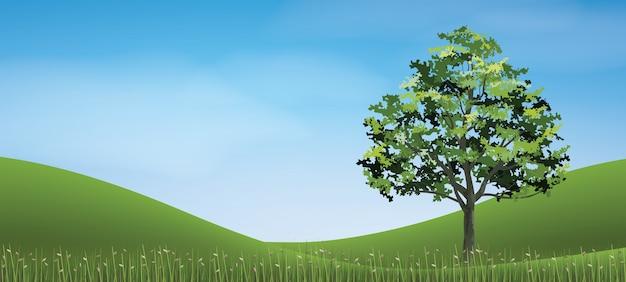 Baum mit hügel des grünen grases.
