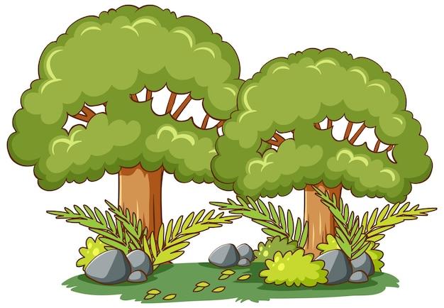 Baum mit naturelement im karikaturstil lokalisiert auf weiß