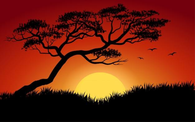 Baum- und grassilhouette bei sonnenuntergang