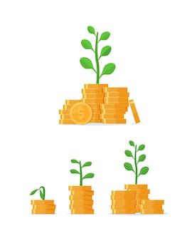 Baum wächst auf münzstapel mit investmentfonds einkommen erhöhen zinsbudgetsaldo