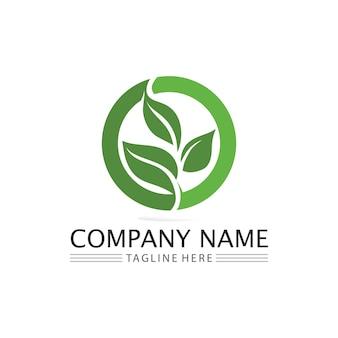 Baumblatt und grünes logo design freundliches konzept