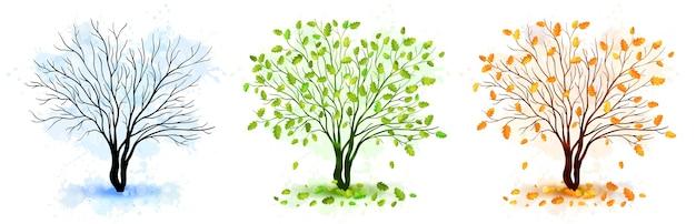 Baumjahreszeiten-naturillustration