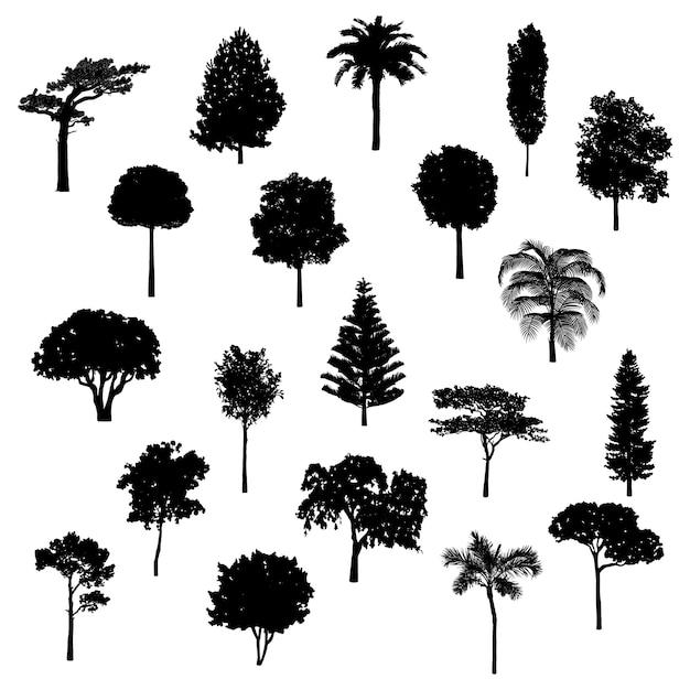 Baumsammlung