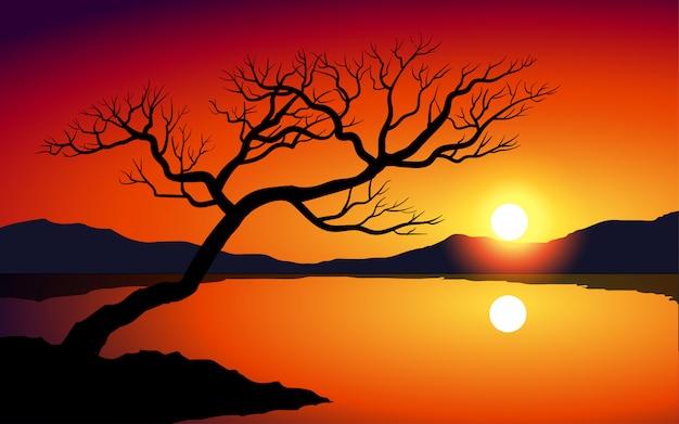 Baumschattenbild im see mit leuchtendem sonnenuntergang