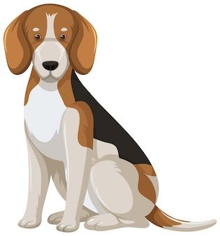 Beagle-karikaturstil auf weißem hintergrund