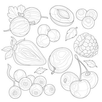 Beeren eingestellt. schwarz-weiß-skizze.malbuch antistress für kinder und erwachsene.