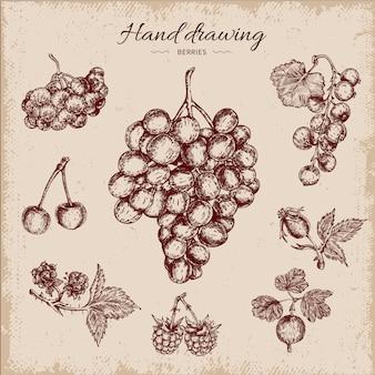 Beeren handgezeichnetes design