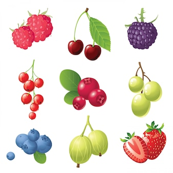 Beeren icons set