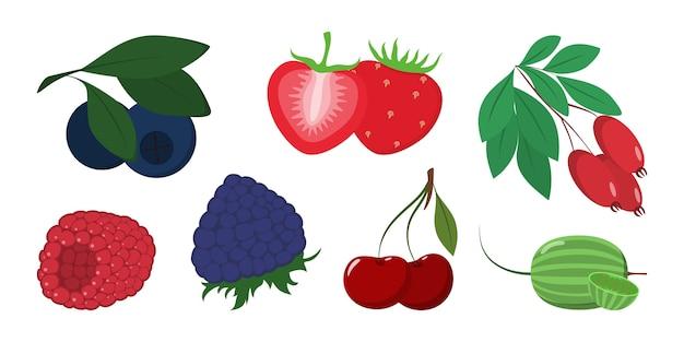 Beeren-set. sammlung von köstlichen reifen lebensmitteln. brombeere