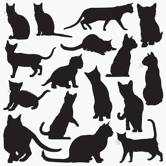 Bengalische katzen-silhouetten