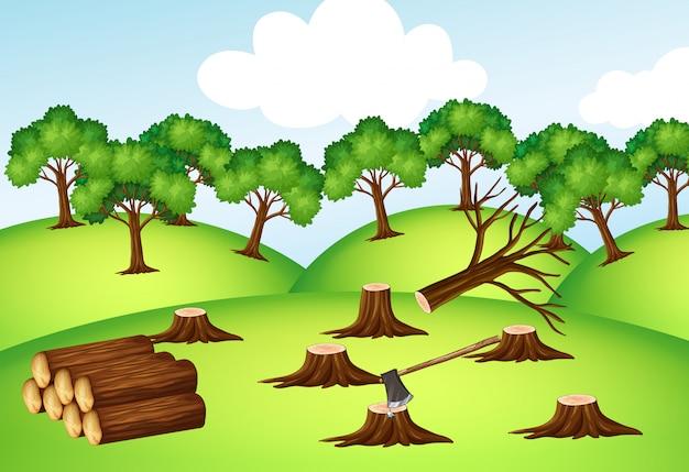 Berge mit gehackten bäumen