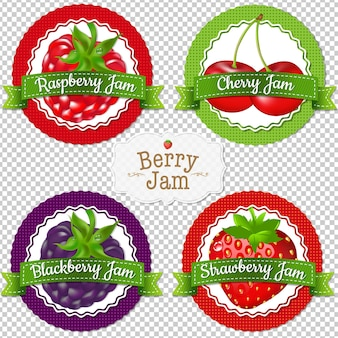 Berry labels set illustration design