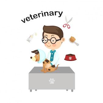 Beruf veterinary.vector abbildung.