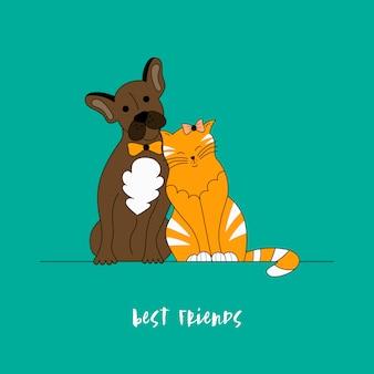 Beste freunde des hundes und der katze.