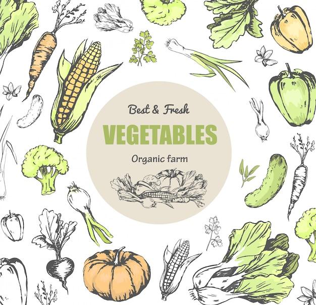 Bestes und frisches gemüse vom bio-bauernhof