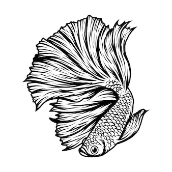 Betta fisch-vektor-illustration