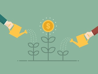 Bewässerung der Münze Pflanze