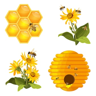 Biene auf wabe, bienenstocknest, bienen auf gelben feldblumen gesetzt