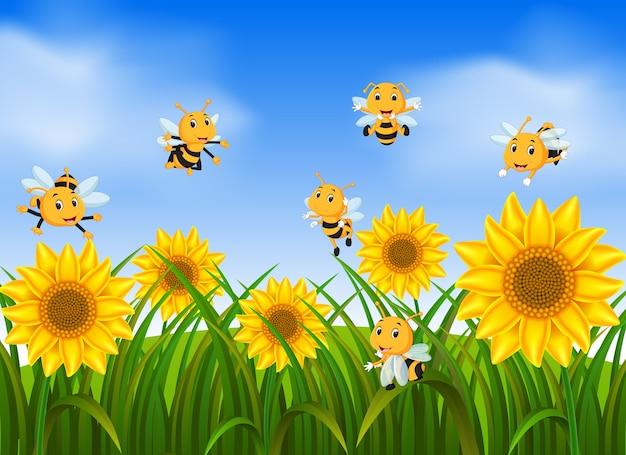 Bienen, die in sonnenblumengarten fliegen