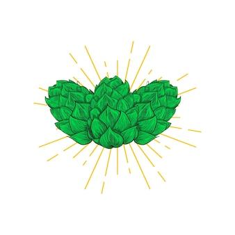 Bier hopfen design. gravur-stil