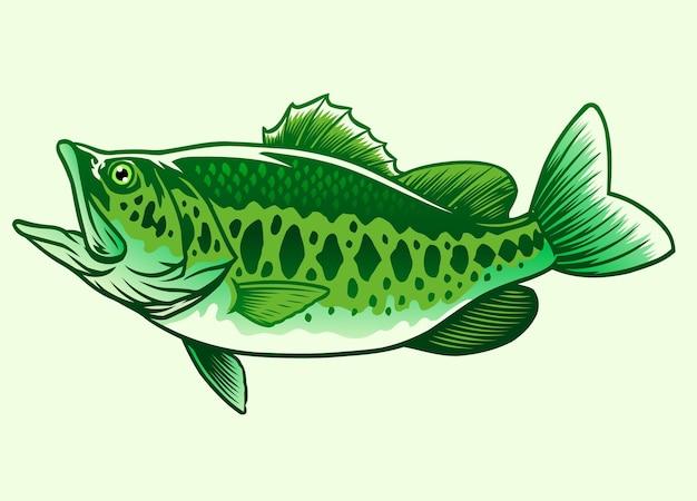 Big bass grüner fisch