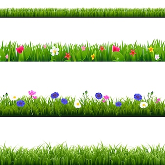 Big set grüne gras- und frühlingsblumengrenzen