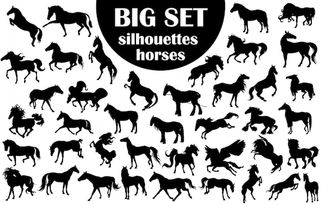 Big set silhouetten pferde
