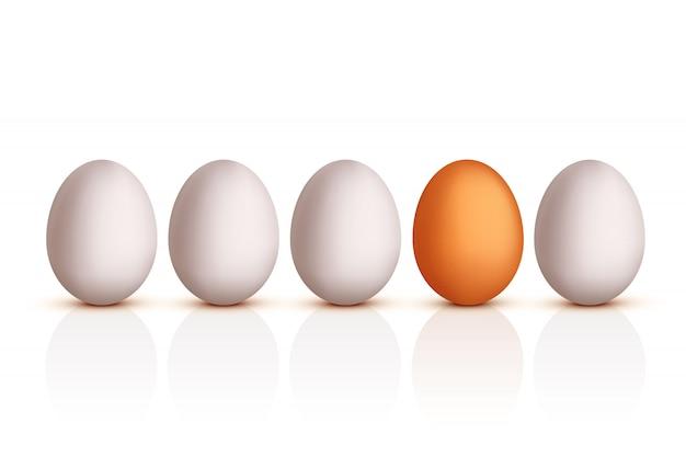 Bild des eiersets
