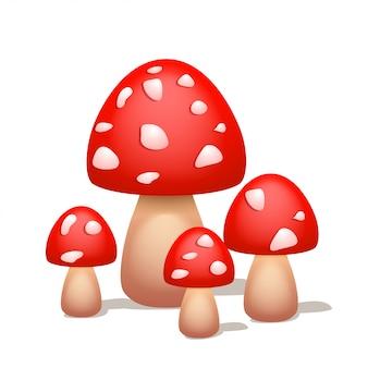 Bild des pilzes