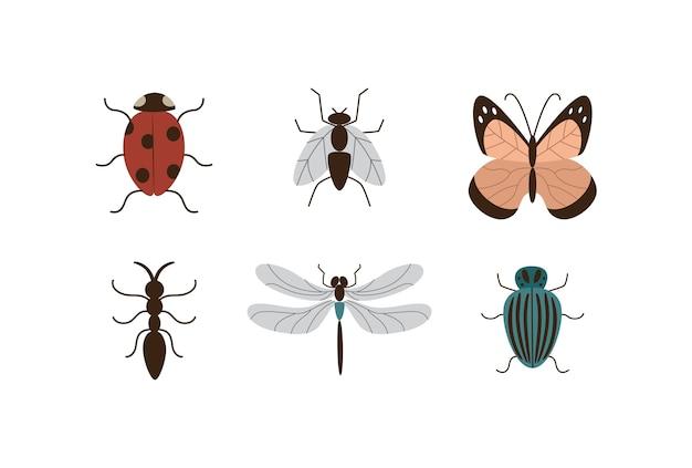 Bildersatz von verschiedenen insekten- und gartenpflanzenschädlingen flach lokalisiert auf weißem hintergrund. schmetterlings- und käferkarikaturikonen- oder symbolsammlung.
