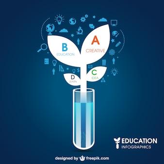 Bildung und wissenschaft infografik