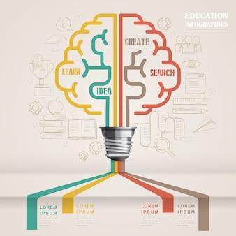 Bildungs-infografik-schablonendesign mit gehirnsymbol