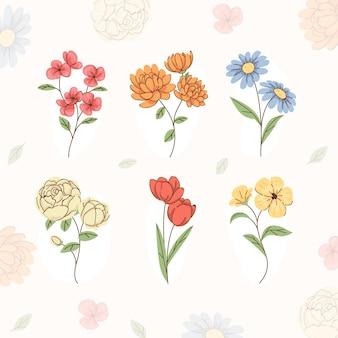 Bio-flachblumensammlung